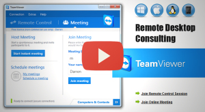 Remote Conferencing Consulting Session